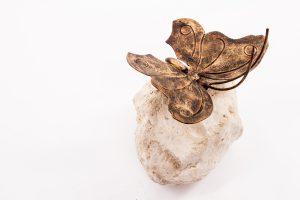 Schmetterling auf dem Stein